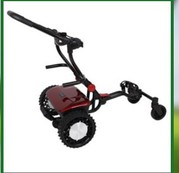 Sunrisegolfcarts.com offers affordable remote control golf cart